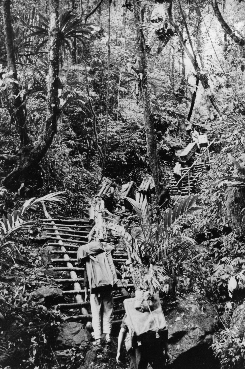 War supplies carried through jungle routes from North Vietnam and Cambodia to the southern Ho Chi Minh trail during the Vietnam war. Photo: Ullstein Bild via Getty Images