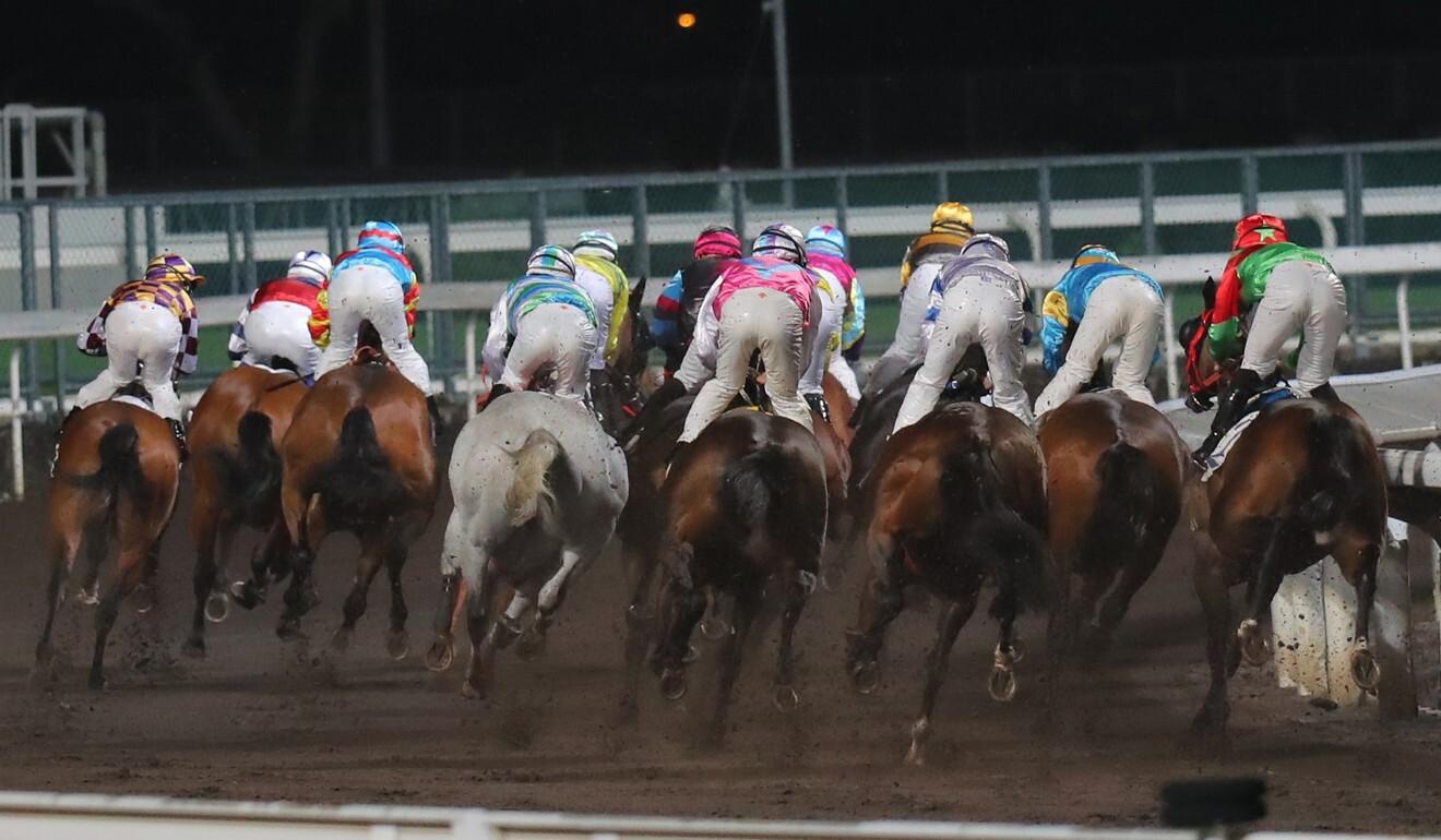 Horses gallop at Sha Tin on Wednesday night.