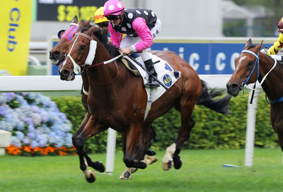 Beauty Generation wins the Chairman's Trophy on Sunday.