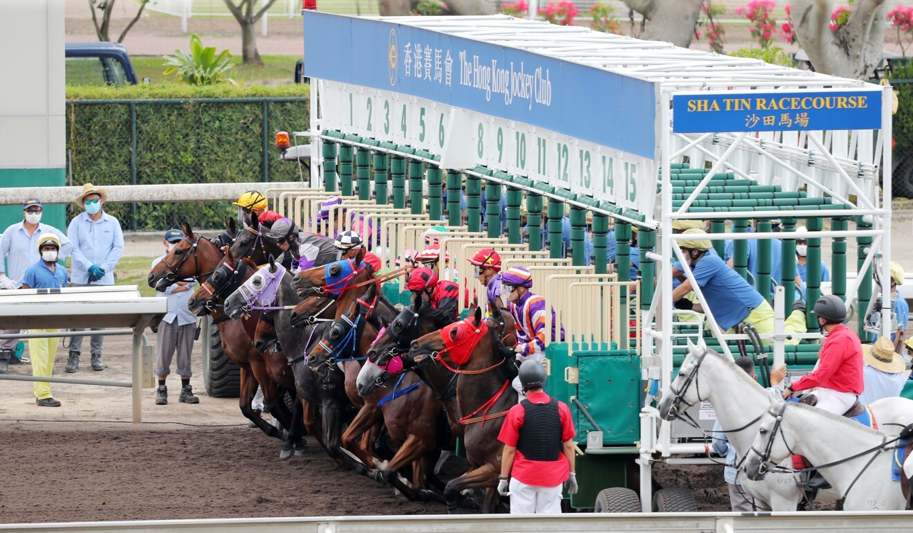 Jade Fortune (centre) seen with his head up during the start at Sha Tin on Sunday.