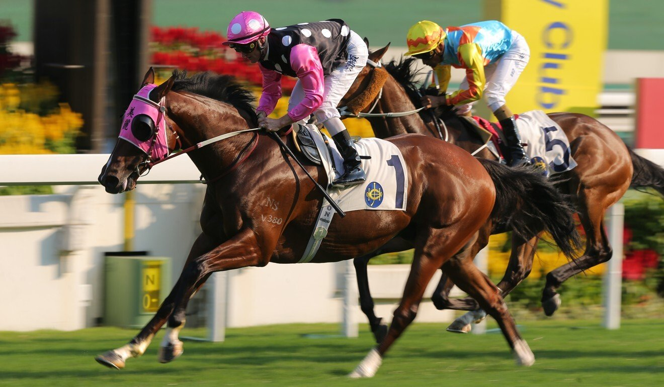 Beauty Generation chases his 19th win at Sha Tin on Sunday. Photo: Kenneth Chan