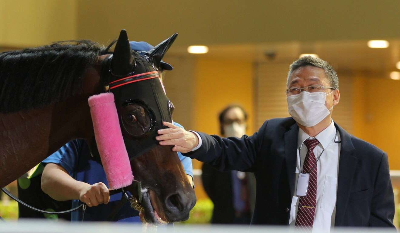 Trainer Francis Lui inspects This Is Class after his win at Happy Valley
