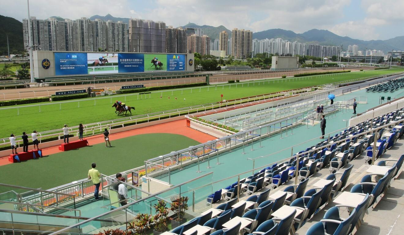 Horses breeze up ahead of Saturday's Hong Kong International Sale.