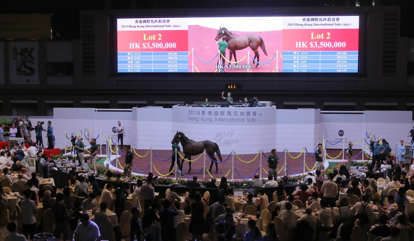 A horse is sold at the 2019 Hong Kong International Sale.