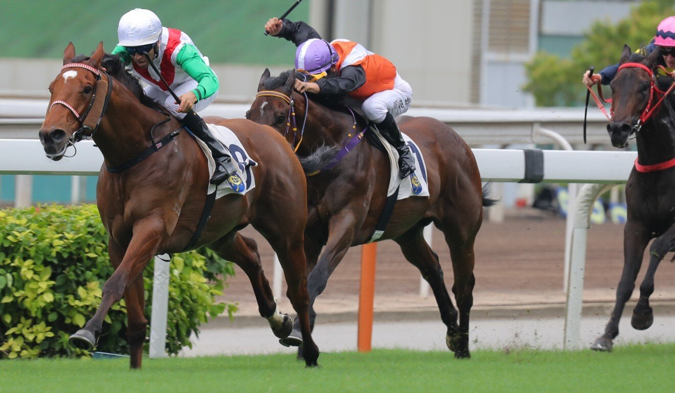 Good Luck Friend salutes at Sha Tin on Sunday. Photo: Kenneth Chan