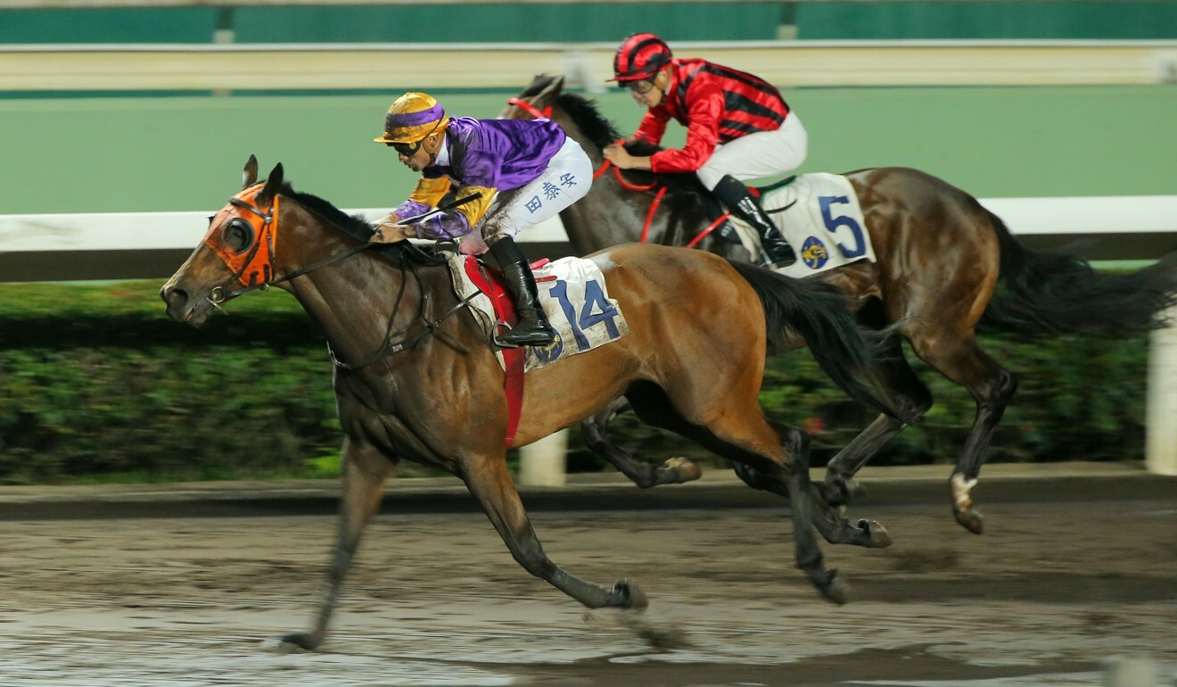 Mongolian King delivers the goods at Sha Tin last month.