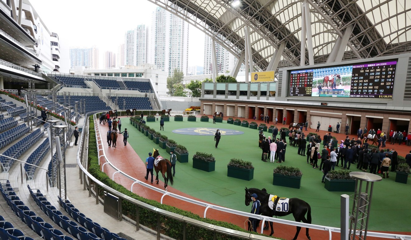 The Sha Tin parade ring with no public fans allowed.