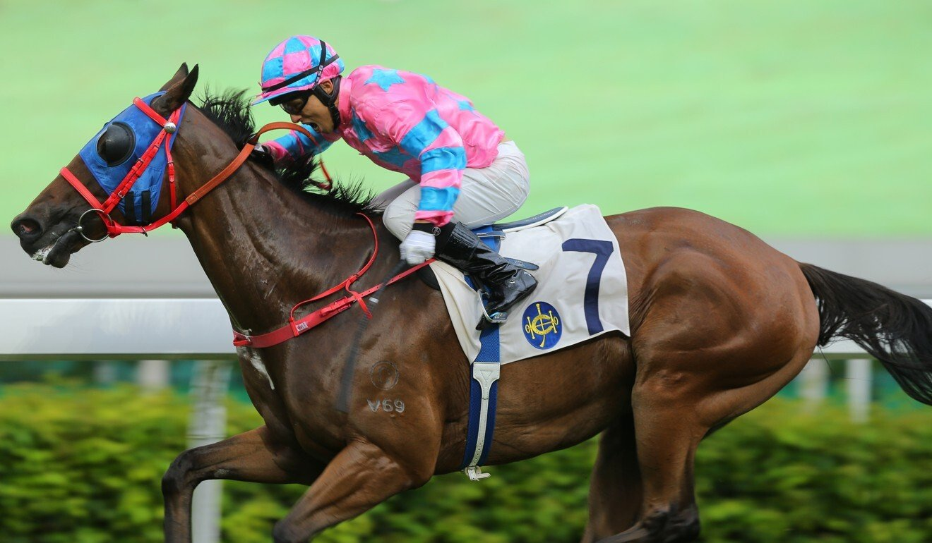 Alfred Chan drives Care Free Prince to victory.