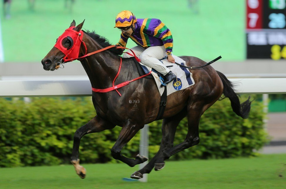 Perfect Match wins at Sha Tin earlier this month.