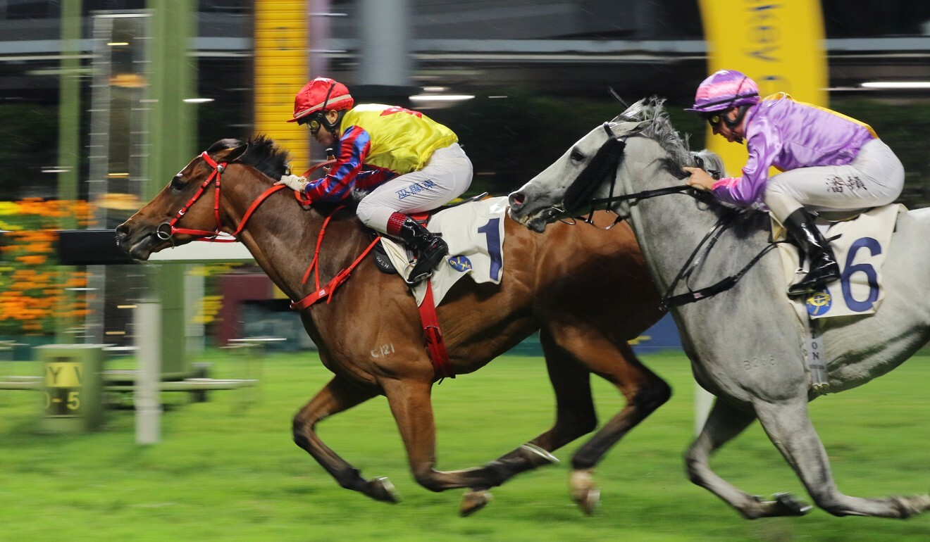 Magnificent salutes at Happy Valley in May.