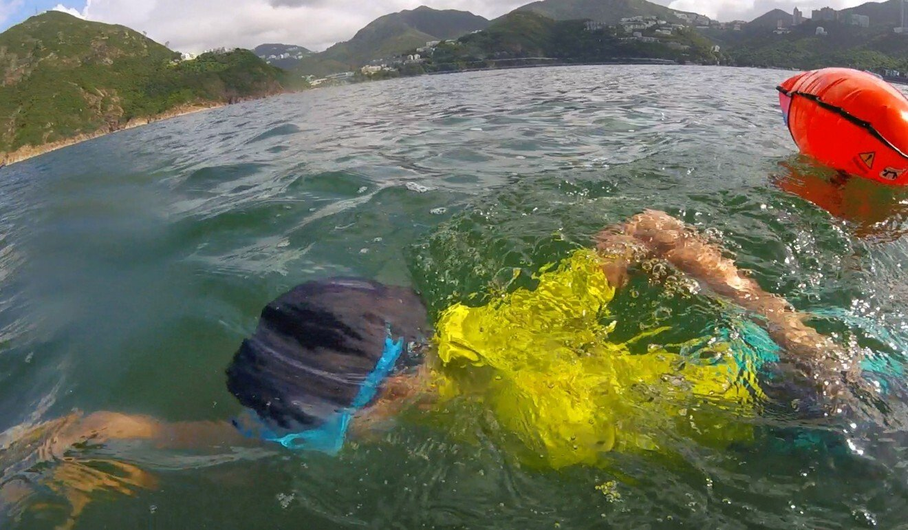Many of the swimmers have been stung, but that has only made them braver.