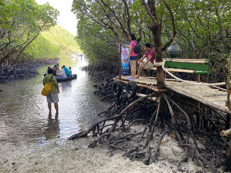 Landing amid mangroves on Bay Canh islet. Photo: Patrick Scott