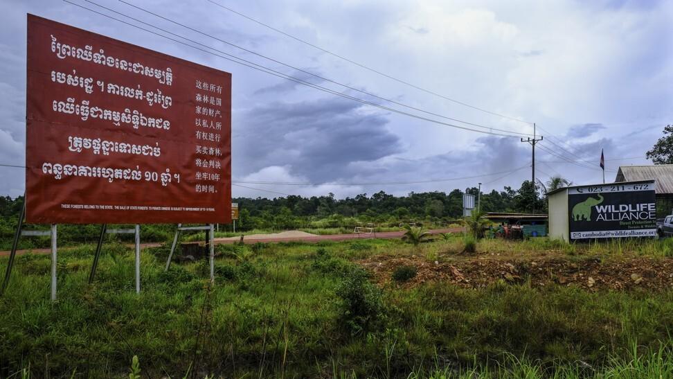 野生动物联盟大楼在小牛肉Pi道路交界处的一个大标志警告高棉,中文和英文的非法森林活动。 照片:彼得·福特