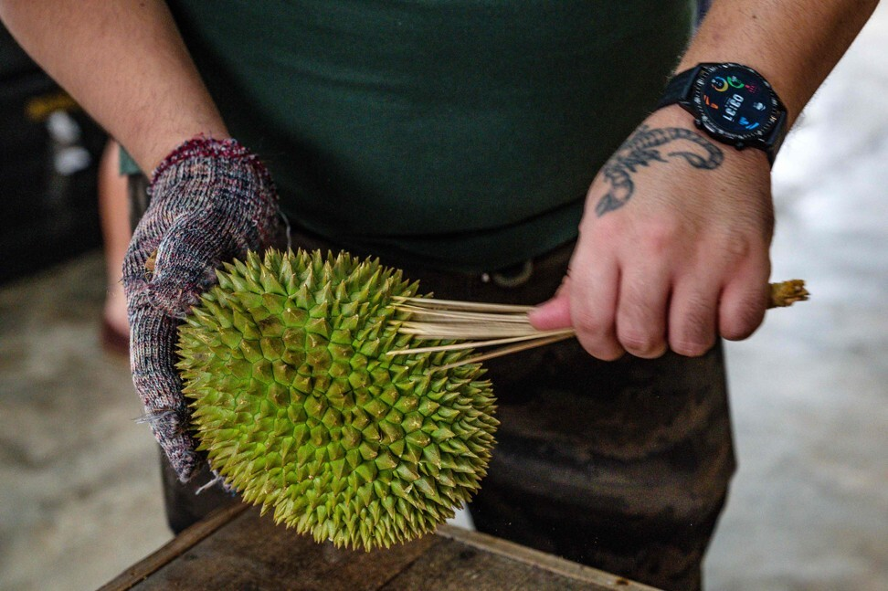 A worker cleans a durian in Kuala Lumpur. Photo: Agence France-Presse