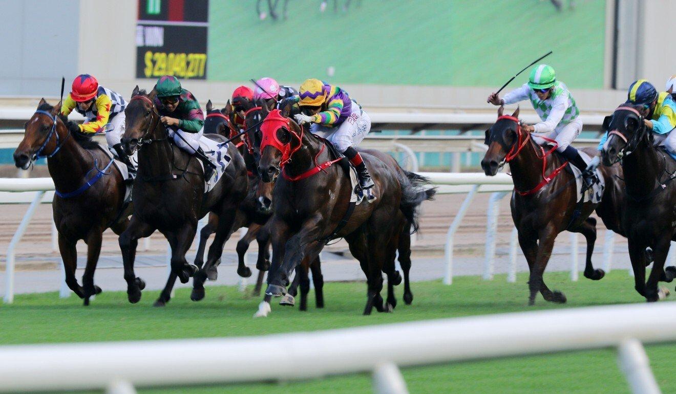 Jockeys race at Sha Tin.