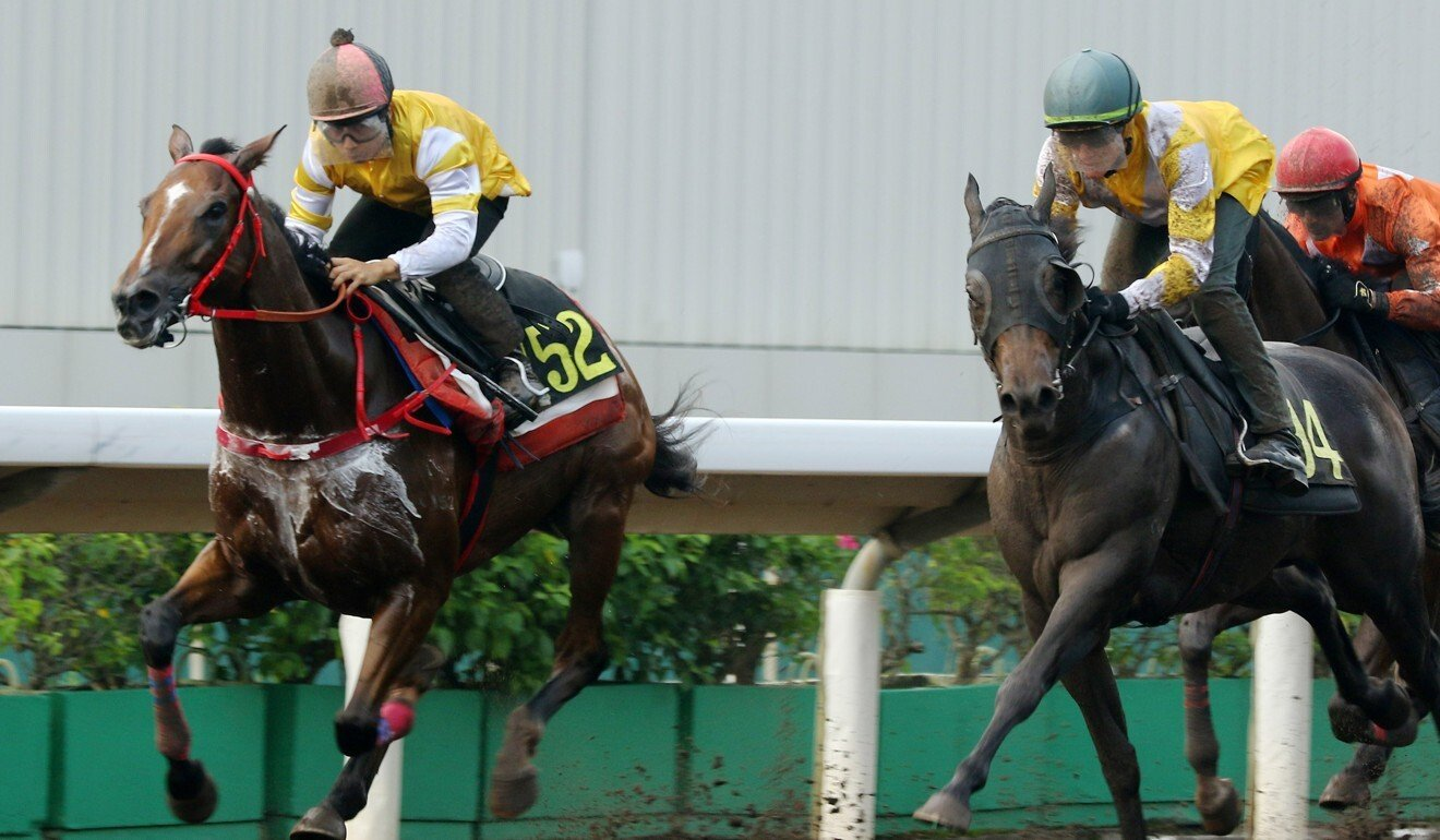 Mighty Power (right) trials at Sha Tin under Chad Schofield.