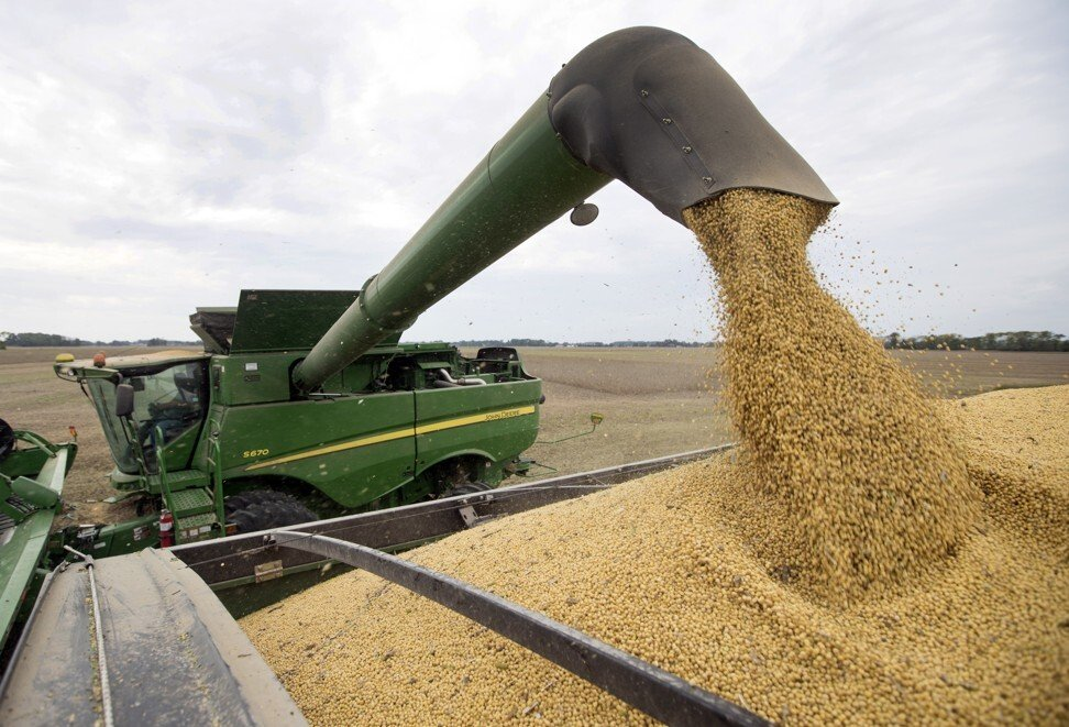 Indiana is the fourth-largest state producer of US soybeans. Photo: AP