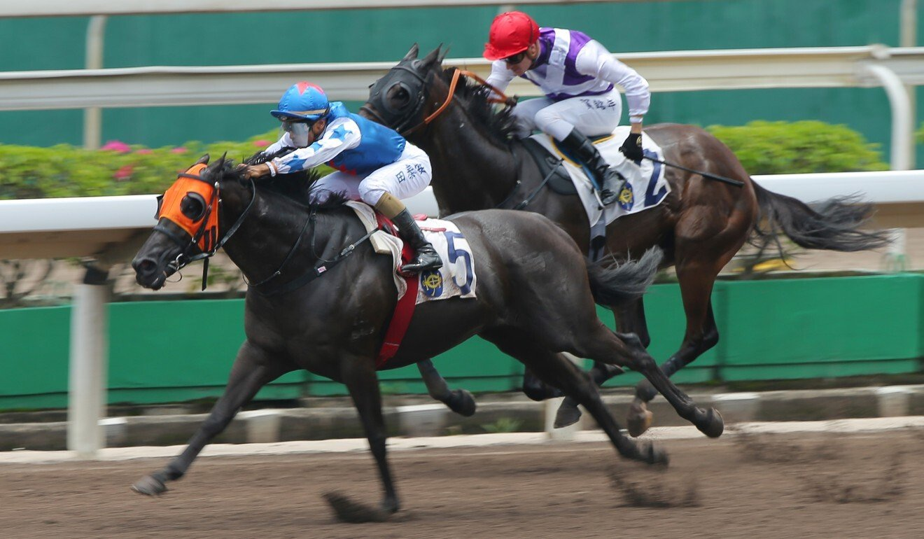 Handsome Rebel races to victory at Sha Tin on Sunday.