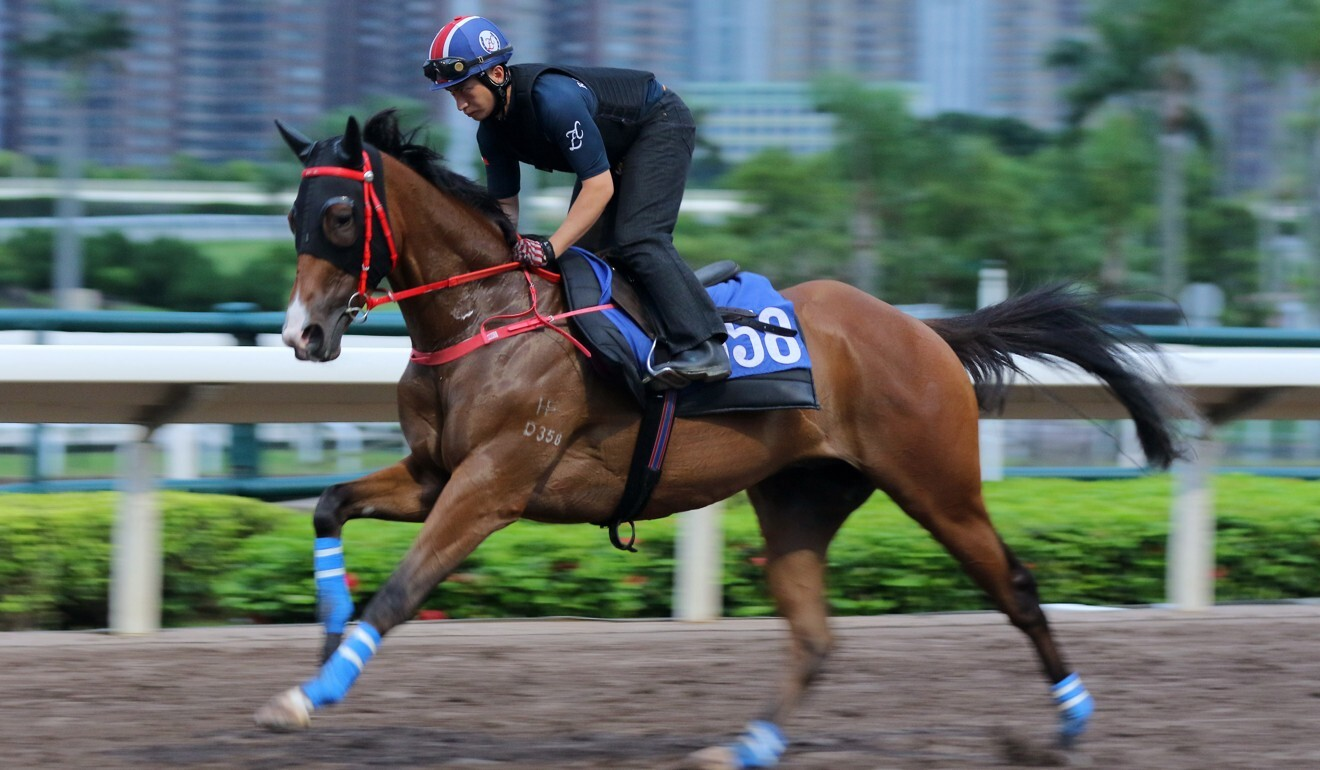Winning Dreamer gallops at Sha Tin on Thursday.