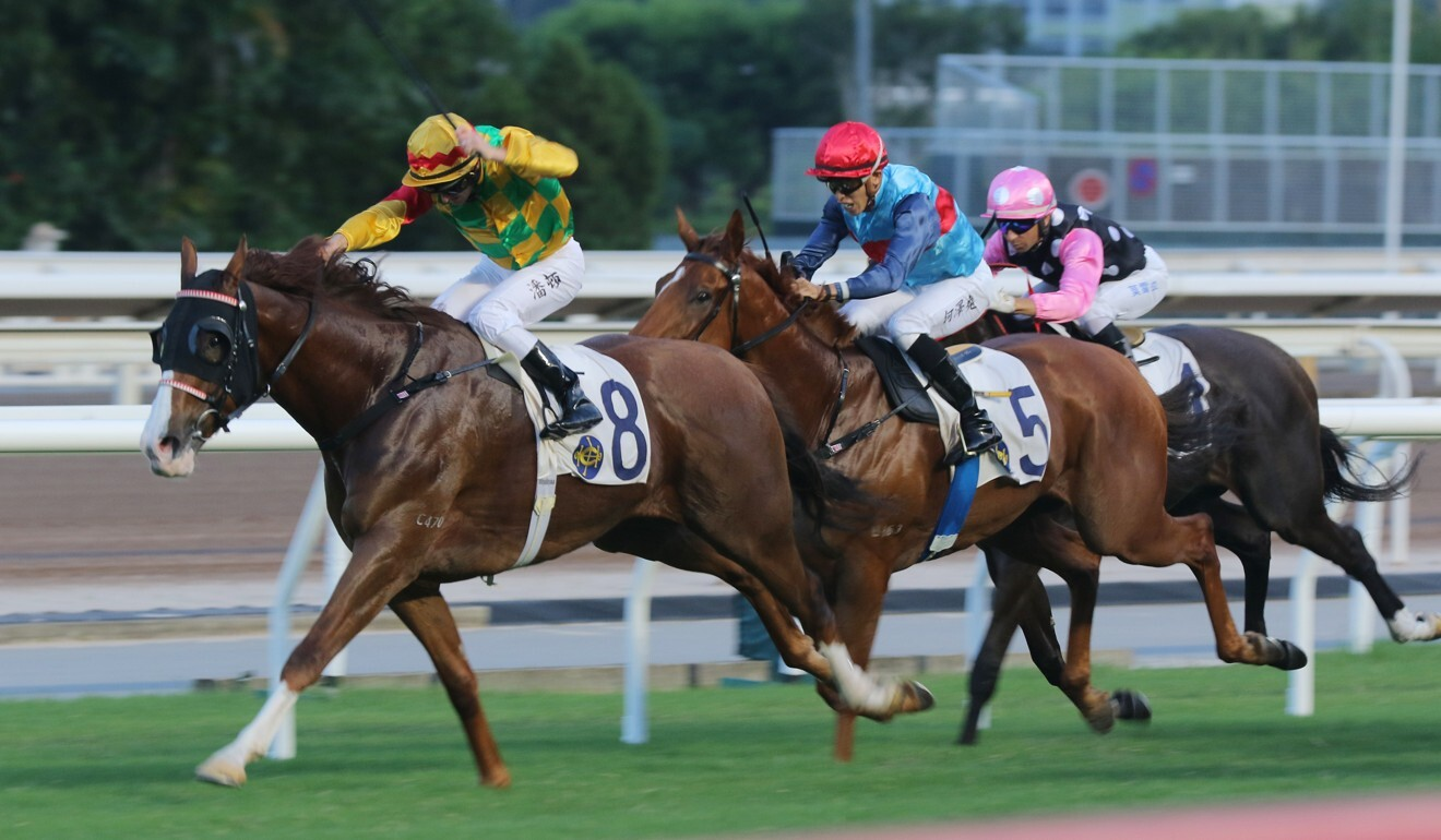 Zac Purton goes for home on Mighty Giant at Sha Tin.