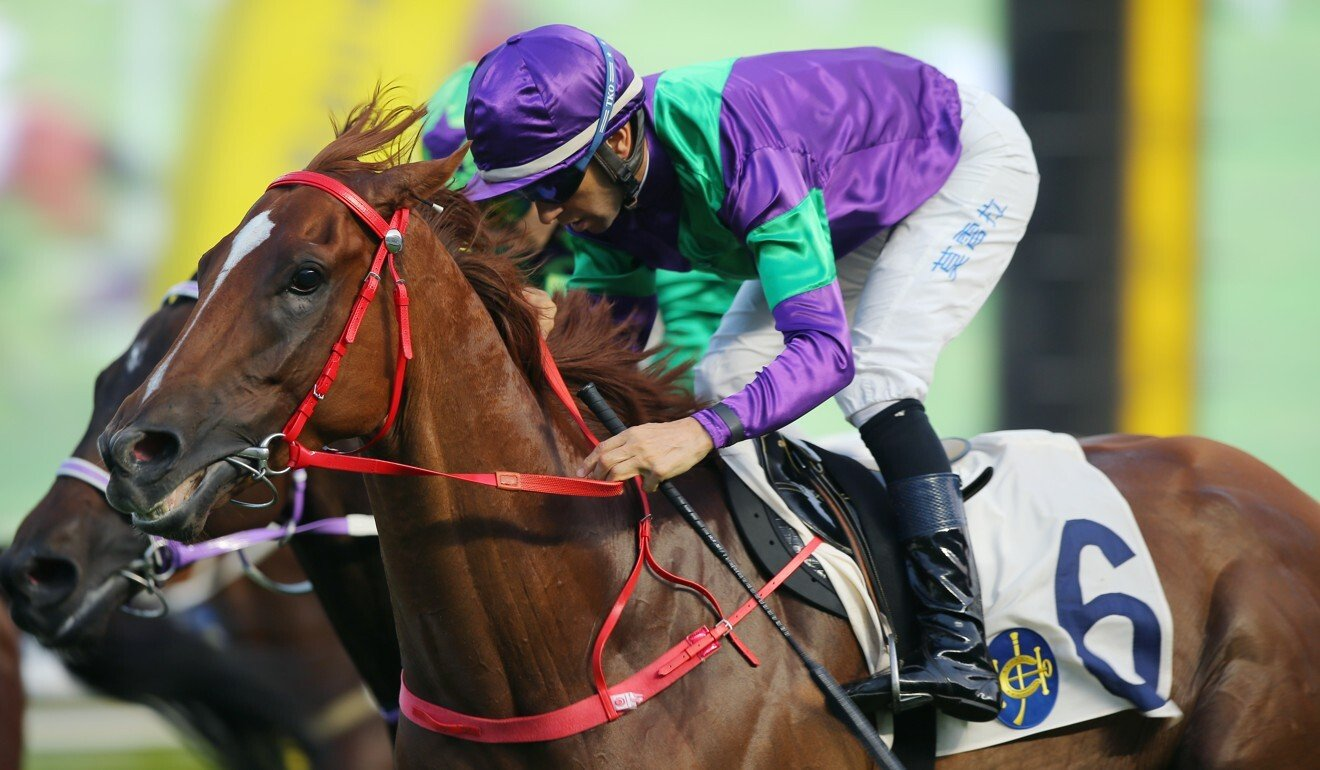 Joao Moreira cruises to victory on Excellent Proposal at Sha Tin on Sunday.