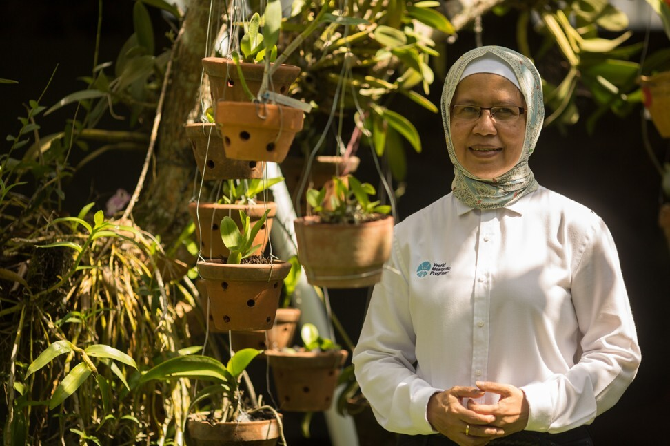 Dr Adi Utarini from Gadjah Mada University at a mosquito release point in the community.