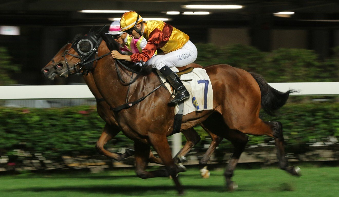 Simply Fluke wins at Happy Valley in April.