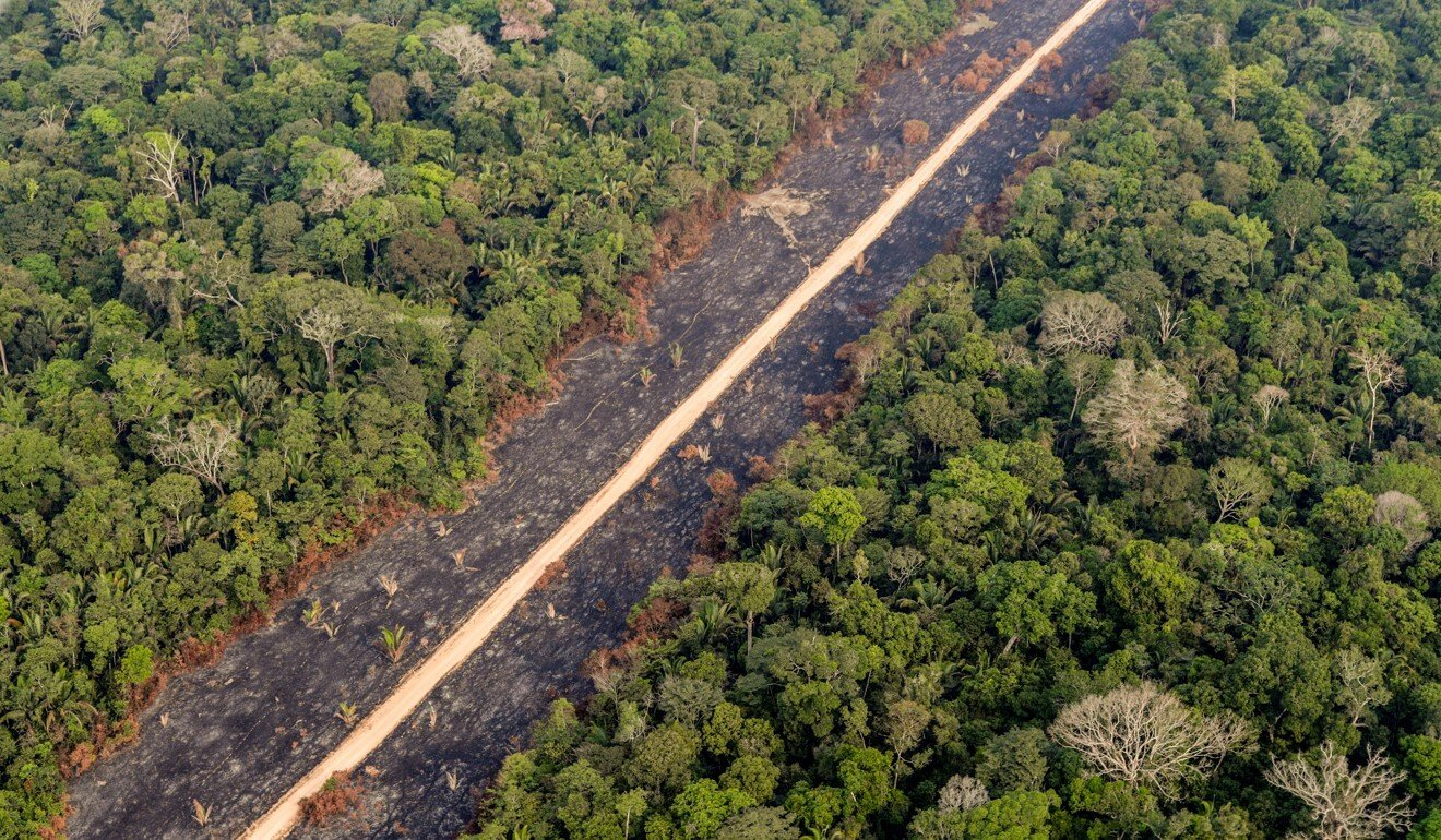 A road runs through a tract of burnt Amazon jungle. Make sure to crop it out of the background of your remote running shot. Photo: Reuters