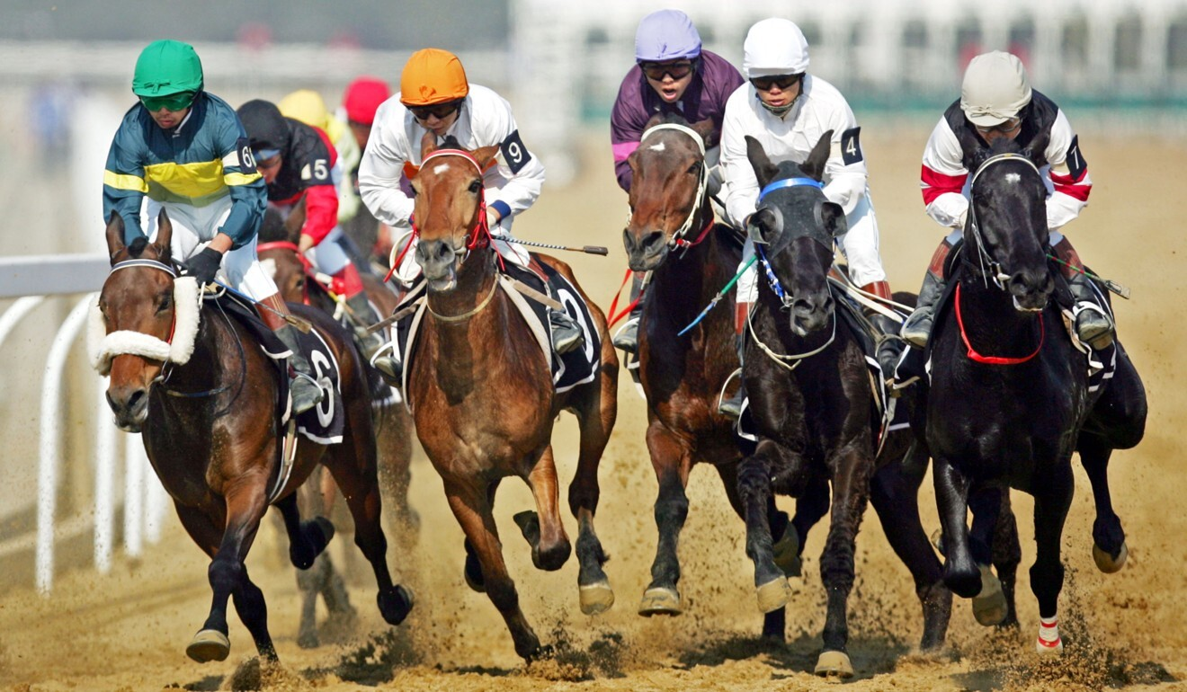Horses race in Wuhan. Photo: Imaginechina