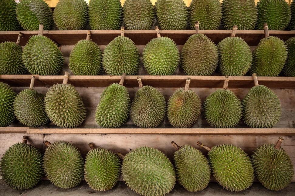Durians on sale in Kuala Lumpur, the Malaysian capital. Photo: AFP