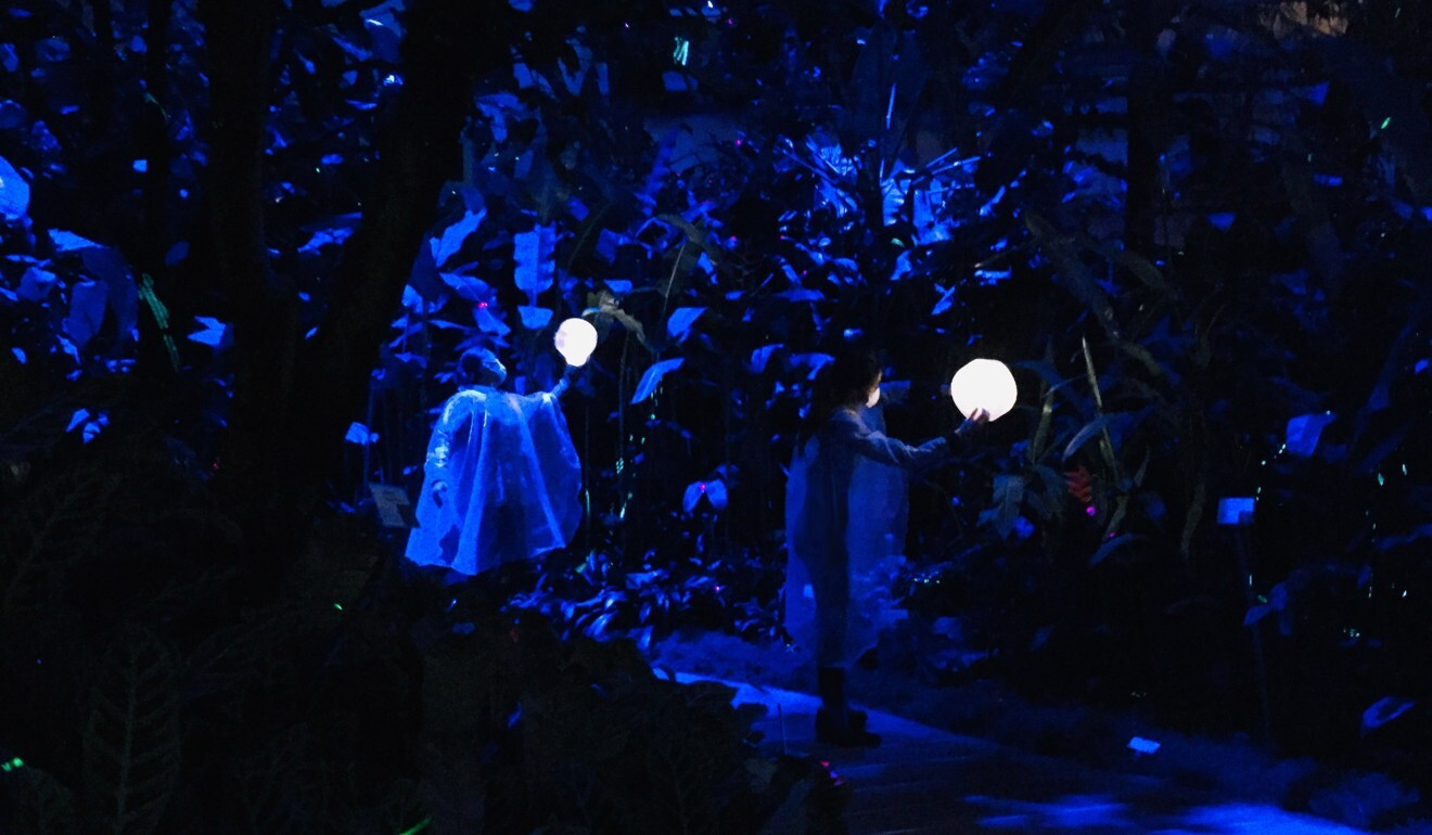 Dancers lead the way in Hong Kong's production of Aria, which takes people on an after-dark journey of music, art and dance through a greenhouse, while highlighting global problems such as pollution and climate change.