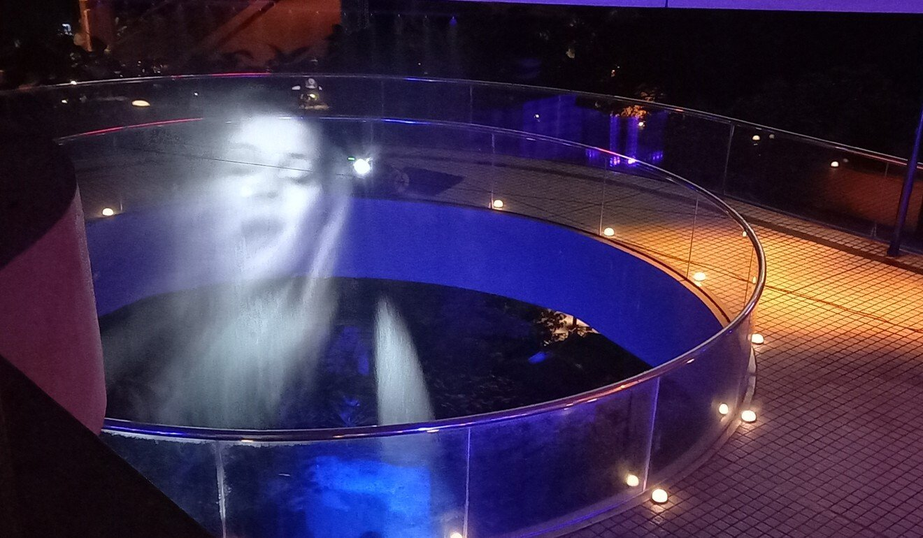 A hologram of one of the Danish Theatre of Voices performers appears on a water vapour screen during the production, Aria.