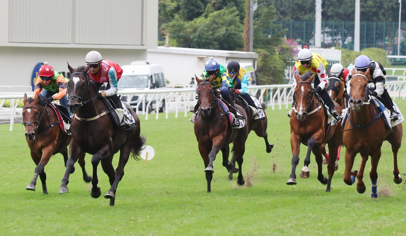 Harmony N Blessed clears out to win his trial under Blake Shinn at Happy Valley last week.
