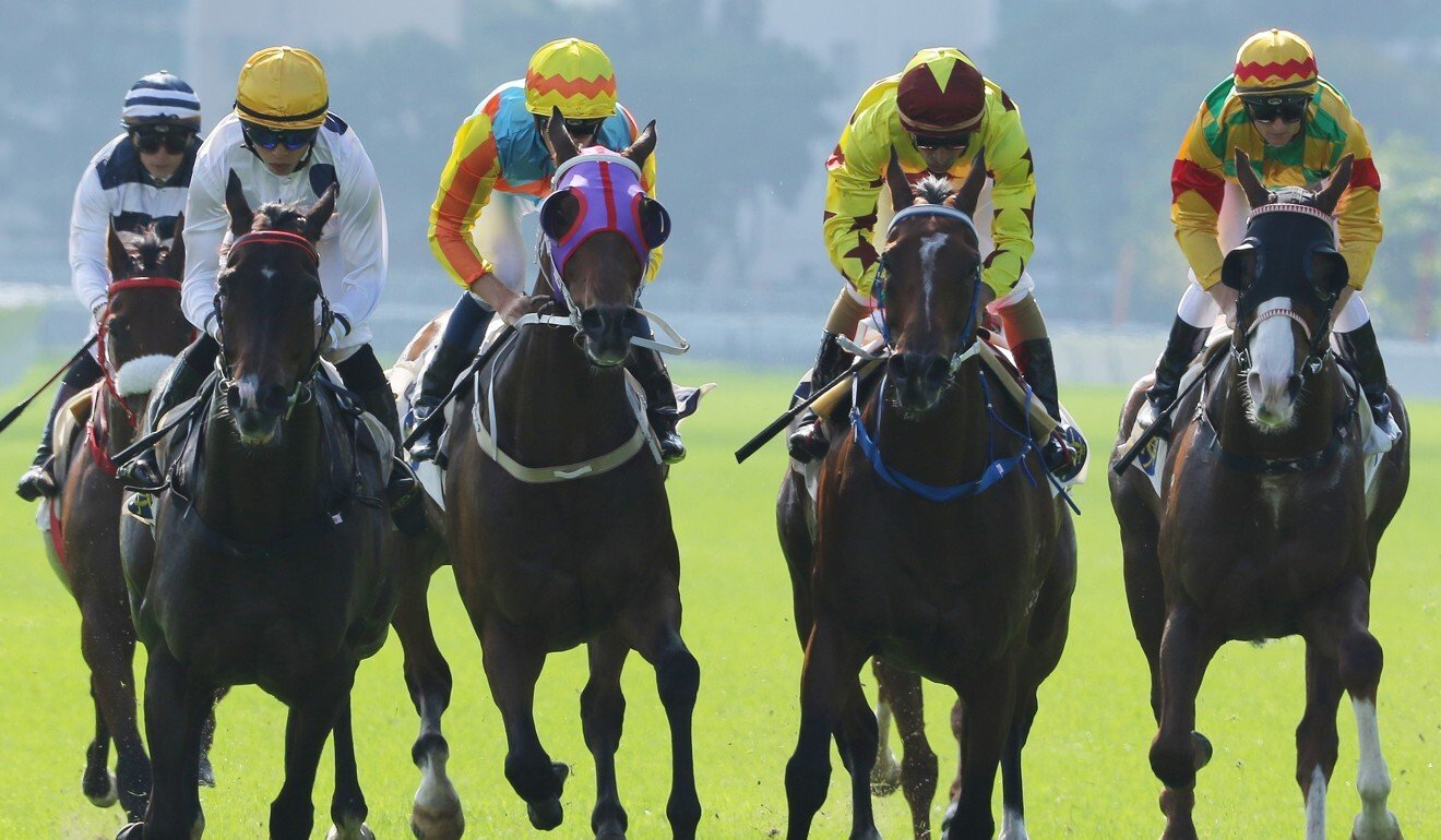 Horses hit the line in the Jockey Club Mile.