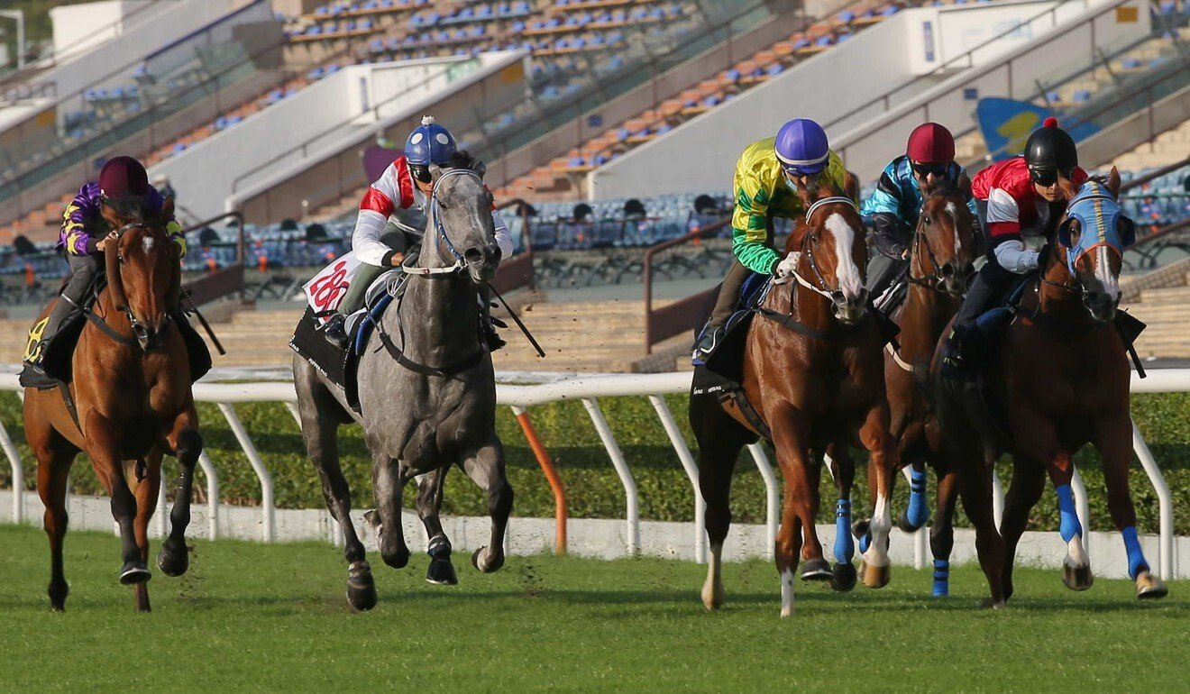 Classique Legend (middle) chases home Sky Field (right) during his trial at Sha Tin on Tuesday.