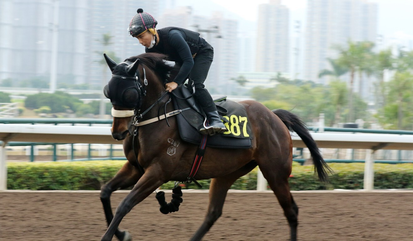 Matthew Poon rides trackwork at Sha Tin on Monday morning.