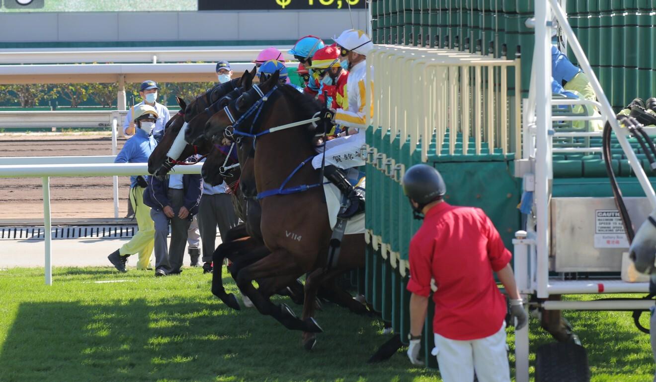 Horses jump from the gates at Sha Tin on Saturday.
