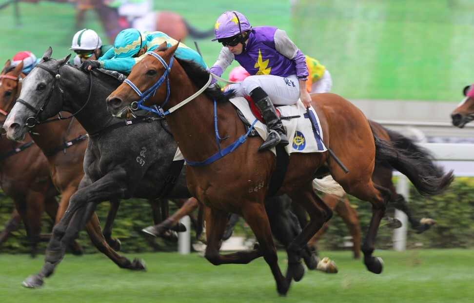 Charizard hits the line to win under Ryan Moore in 2019.