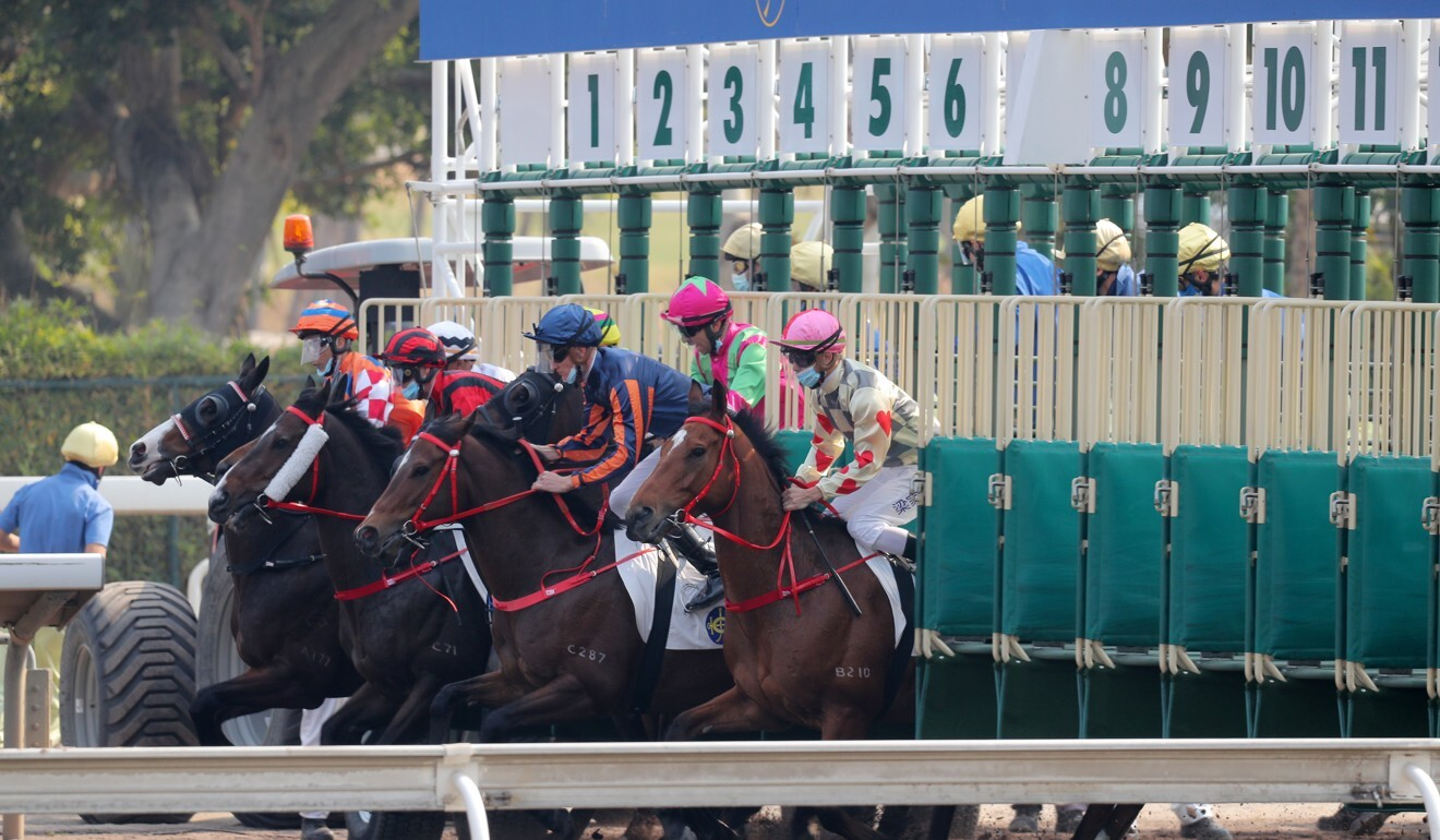 Horses jump in the Class One all-weather feature at Sha Tin.