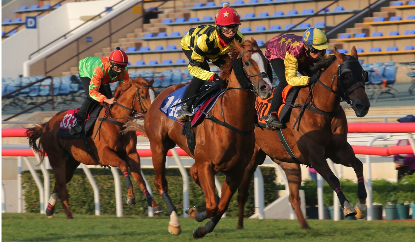 Stronger wins his trial under Jerry Chau at Sha Tin on Tuesday morning.