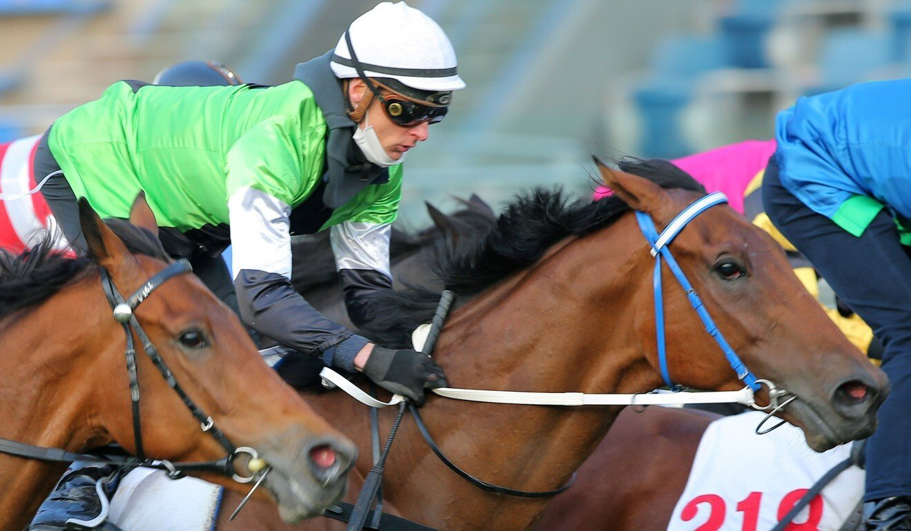 Blake Shinn rides Killer Bee in the fourth trial on Tuesday morning.