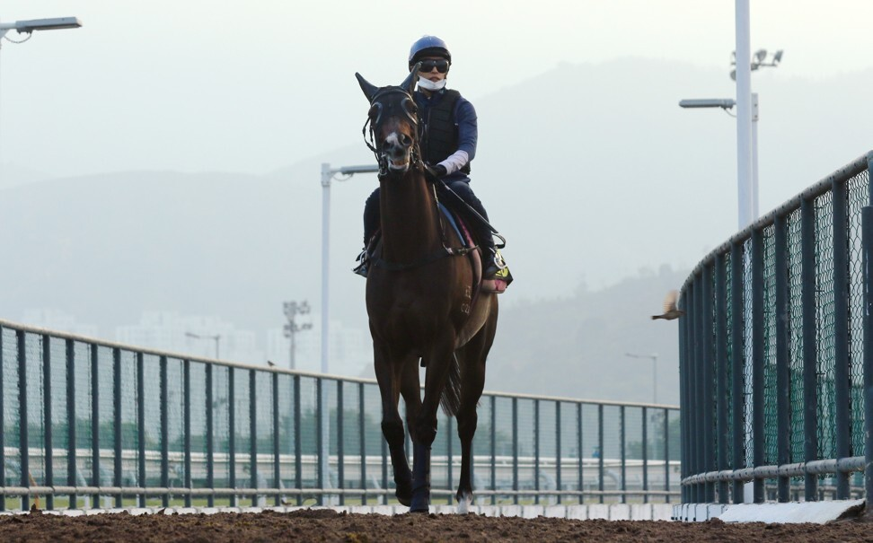 Golden Sixty returns after working on Friday morning.