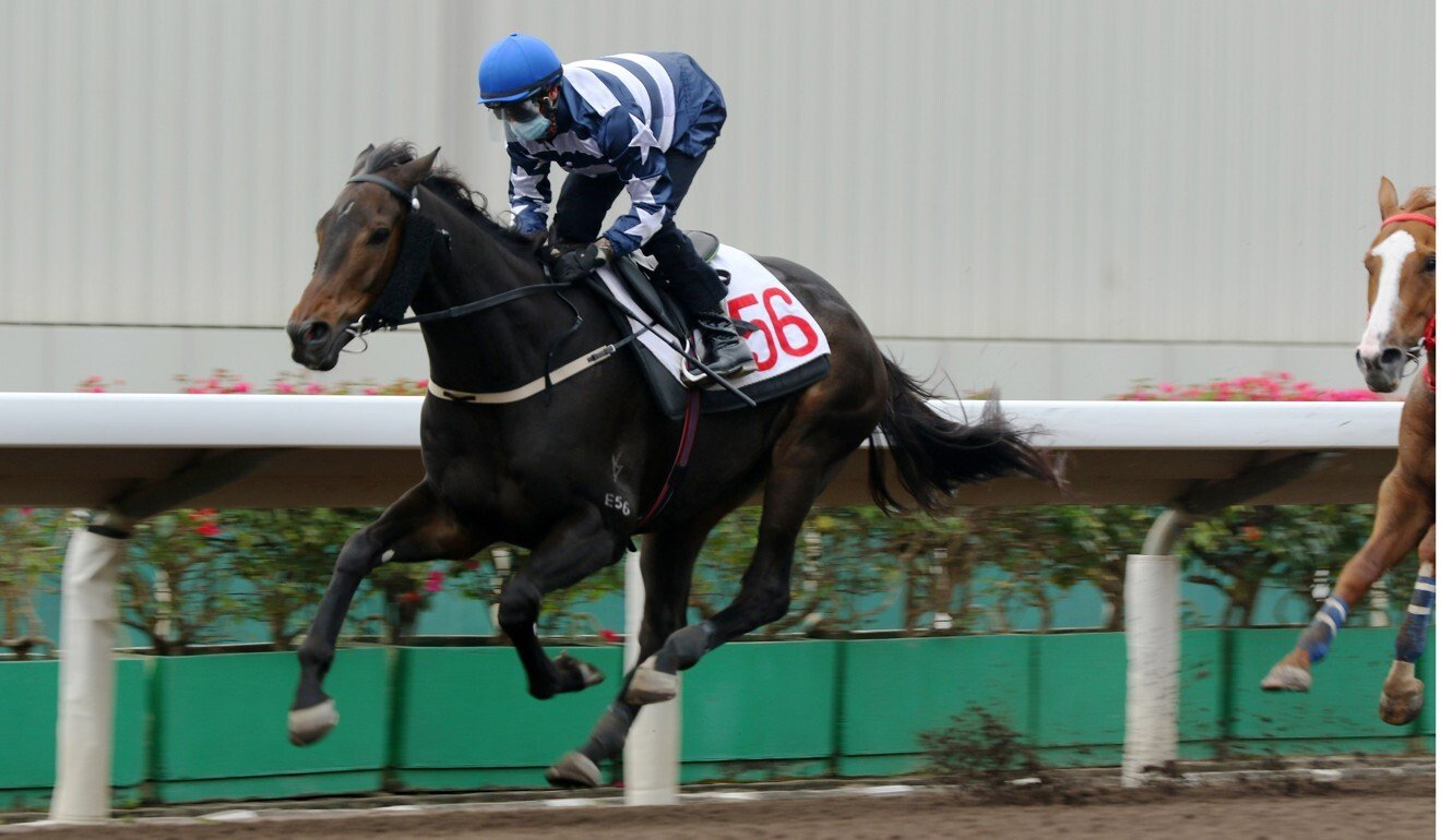 Zac Purton trials Shadow Hero without blinkers earlier in the month.