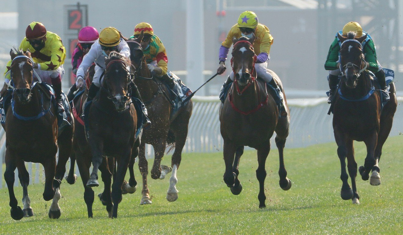 Christophe Soumillon might extend his stay to partner Rise High (right) in the Gold Cup.