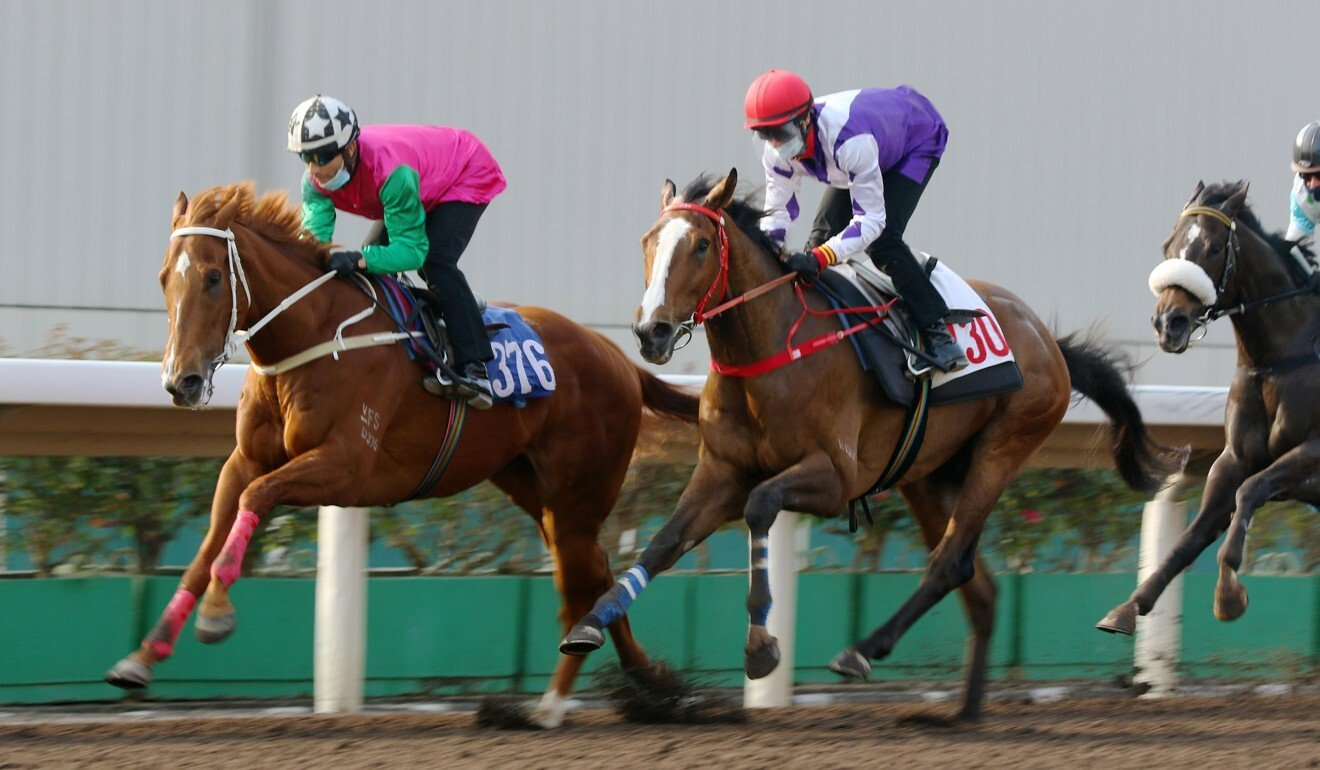 Joyful Fortune strides out under Joao Moreira during a barrier trial last month.