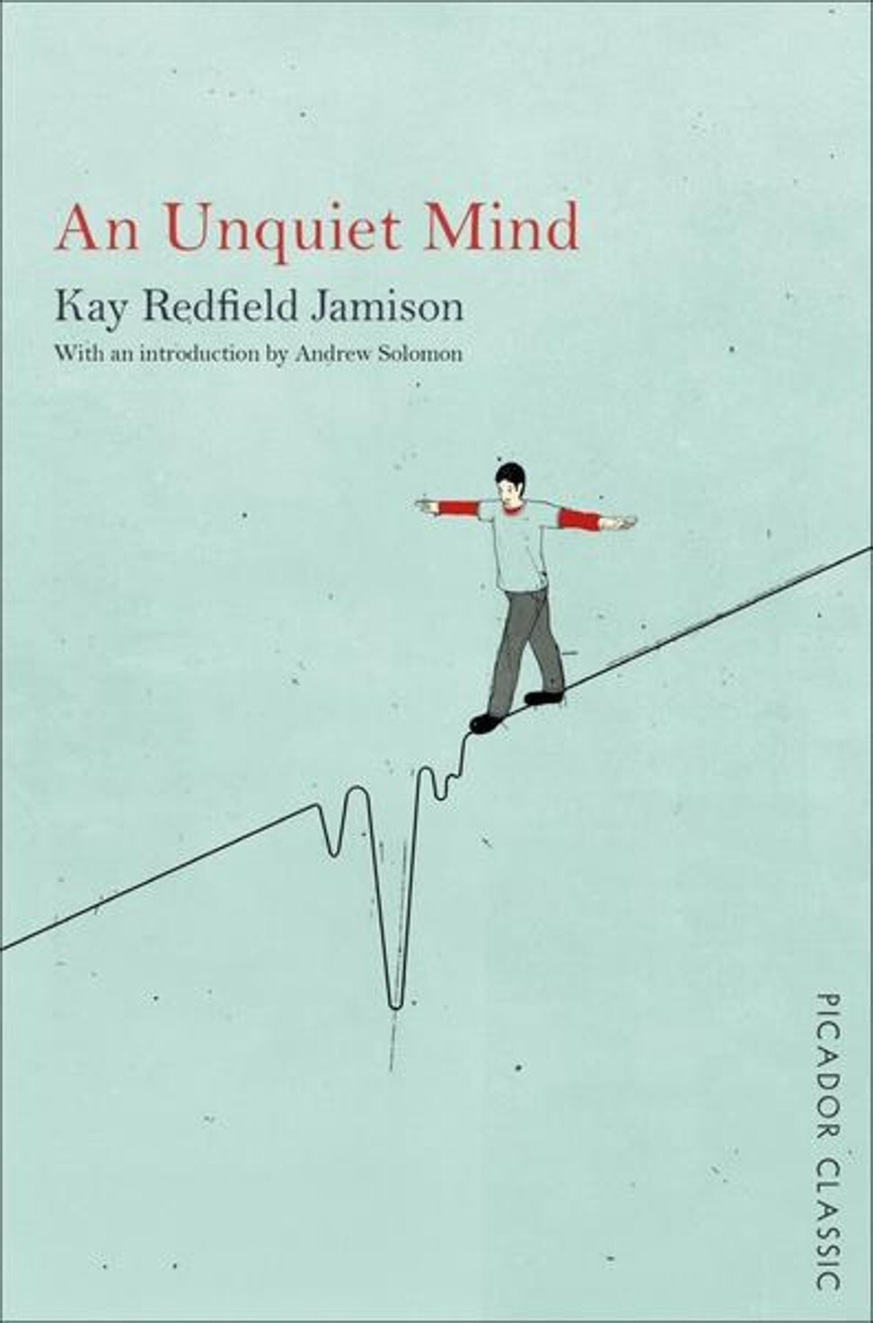 The cover of Redfield Jamison's book. Photo: Picador