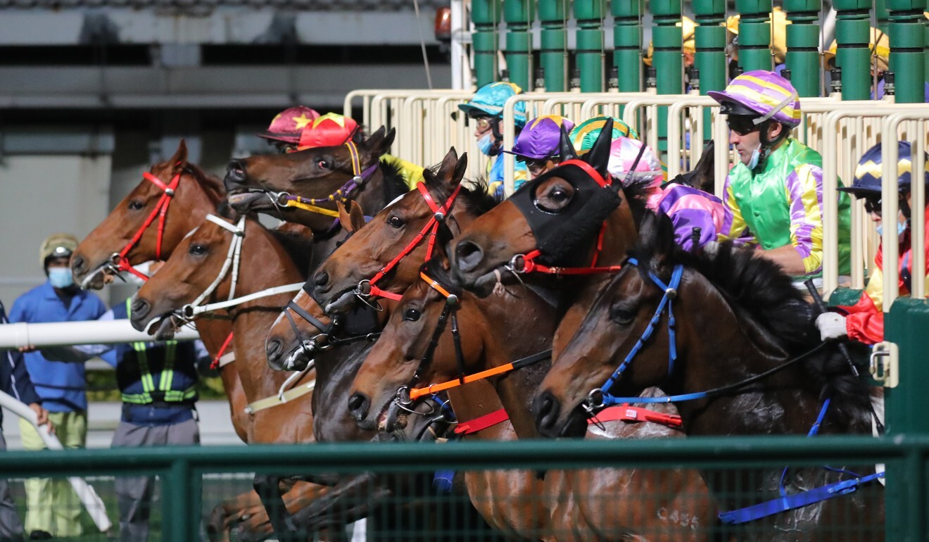 Horses jump from the gates at Sha Tin.