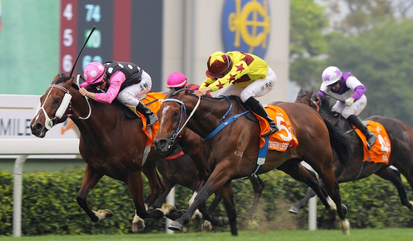 Southern Legend (outside) pips Beauty Generation in the Champions Mile last season.