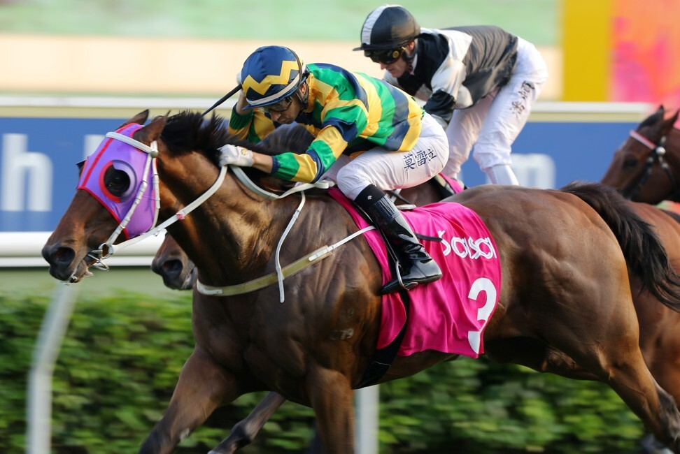 Furore beats home Exultant to win at Sha Tin earlier in the season.