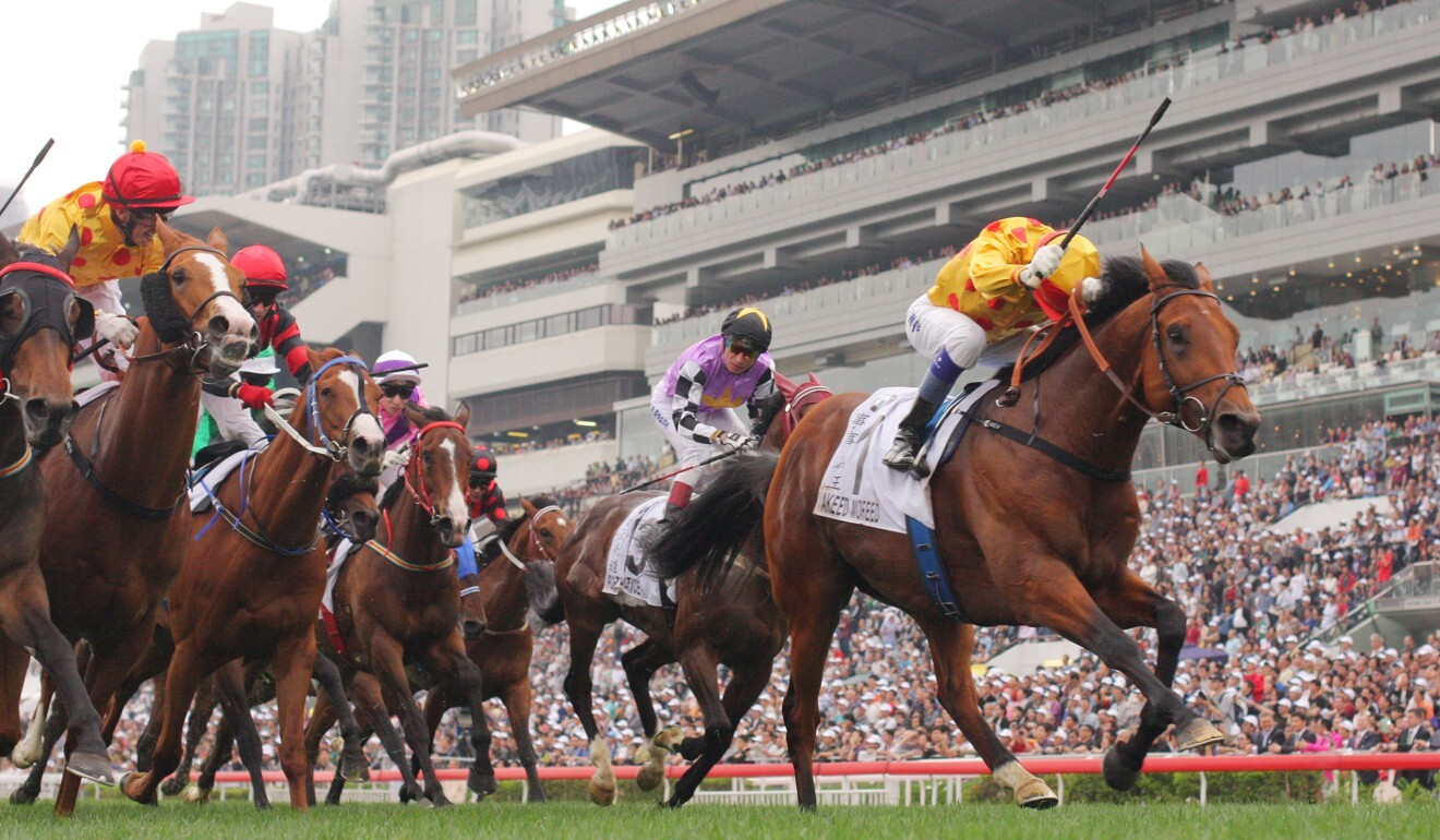 Douglas Whyte wins the 2013 Hong Kong Derby aboard Akeed Mofeed.